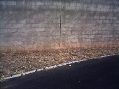 Falta de grama próxima ao muro e pista de caminhadas